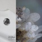 25° plus eine E-Boutique für Sommerkleider von d sein werke | Zürich